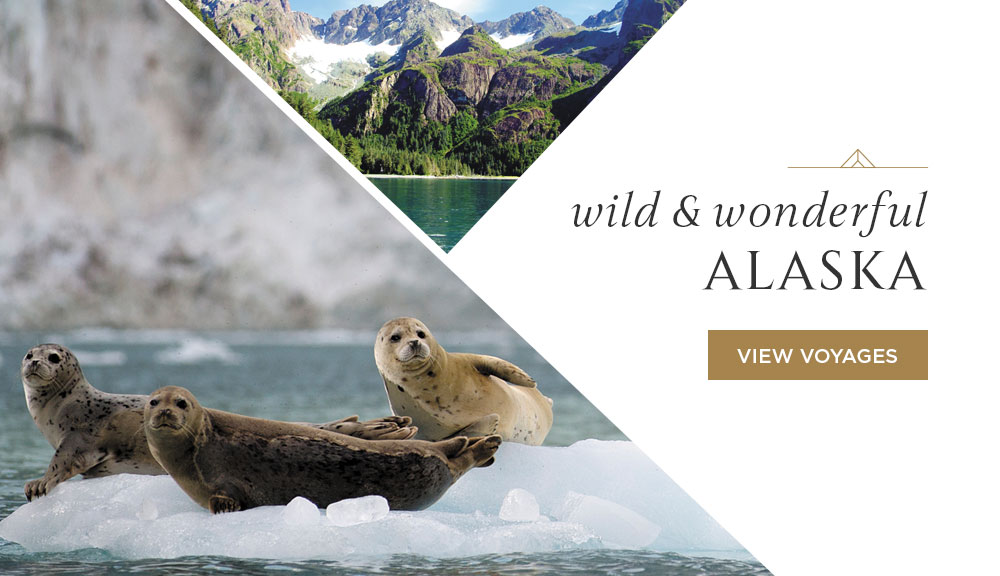 Wild & Wonderful Alaska