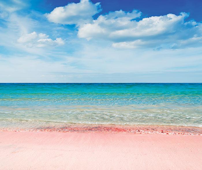 Bermuda_HomepageBlock_011619.jpg