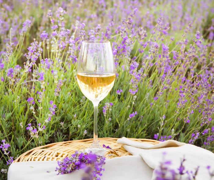 MASTER-CHEF-PROVENCE-LUNCH-&-WINES_FROM-PROVENCE-FRANCE.jpg